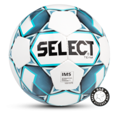 Select Team 2019